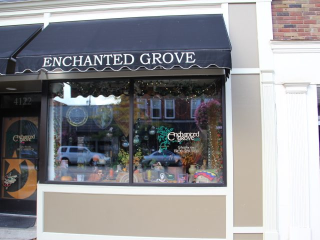 Enchanted Grove