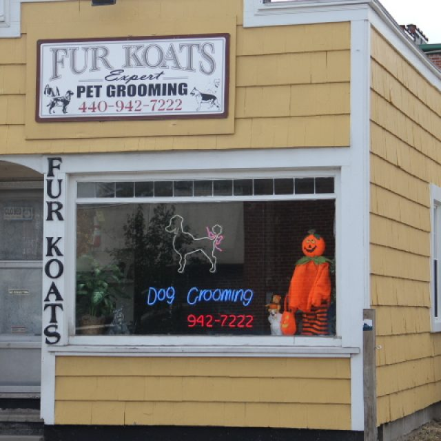 Fur Koats Grooming Salon